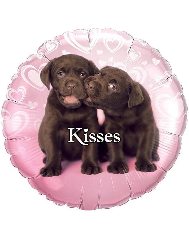 Puppy Kisses-Sally Helmy - Egypt