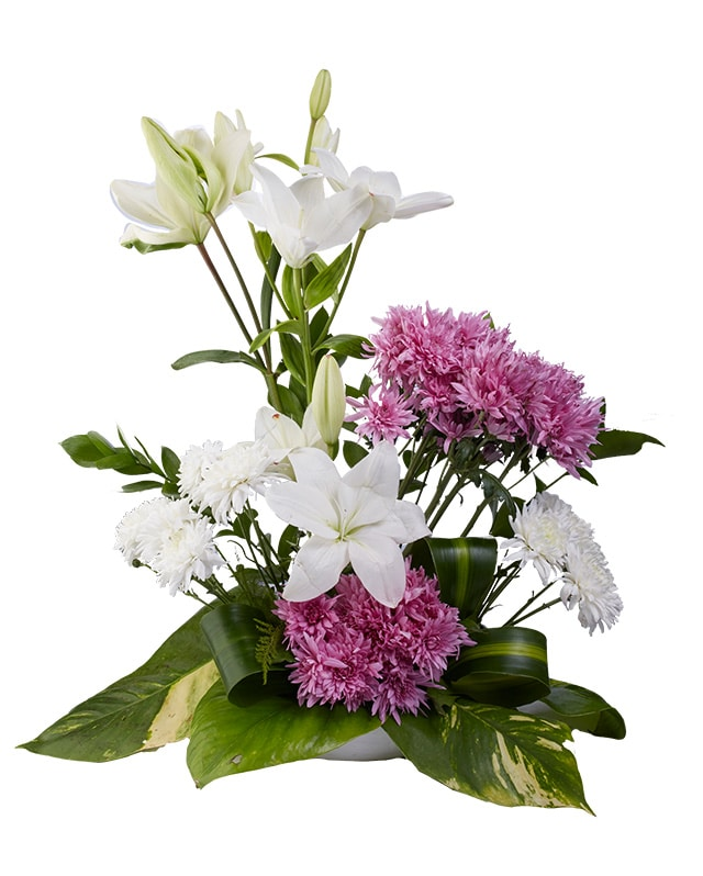 Floral Fantasy-Sally Helmy - Egypt