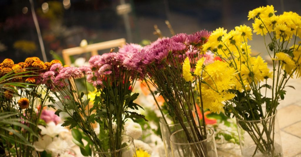 4 Ways to make flowers last longer-Sally Helmy - Egypt